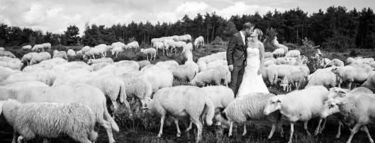 tamar-koppel-fotografie-bruiloften-22