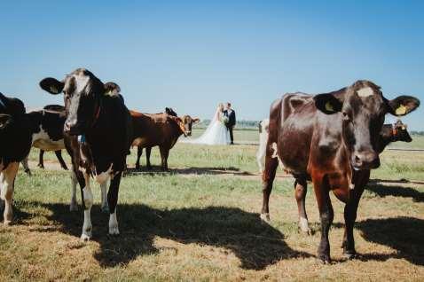 tamar koppel fotografie - bruiloften - (24)